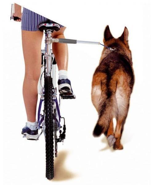 camon walky dog fietsbeugel #95;_60x3x3 cm