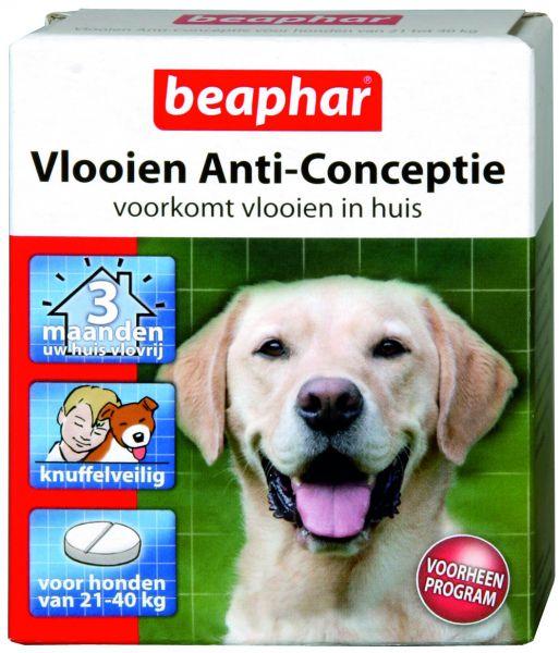 Beaphar grote hond 21-40 kg vlooien anticonceptie