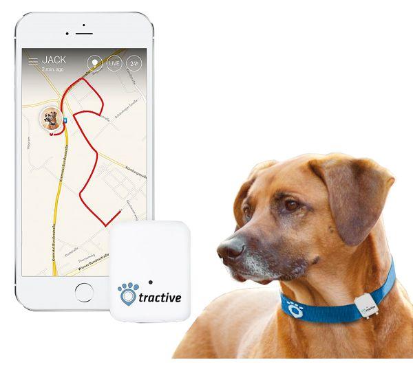 Huis & Tuin > Dier > Hond > Electrische Artikelen > Tractive