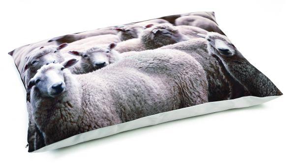 Beeztees Beeztees hondenkussen lounge sjiep beige 100x70 cm