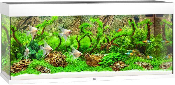 Juwel Aquarium Rio 240 Met Led Verlichting En Filter Wit slechts ...