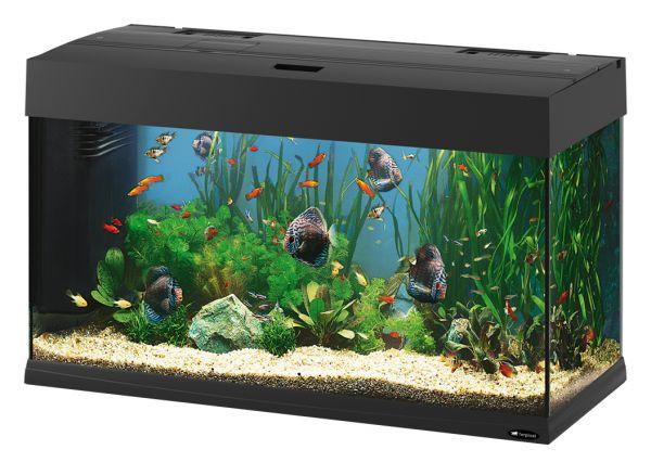 Ferplast aquarium dubai 80 zwart