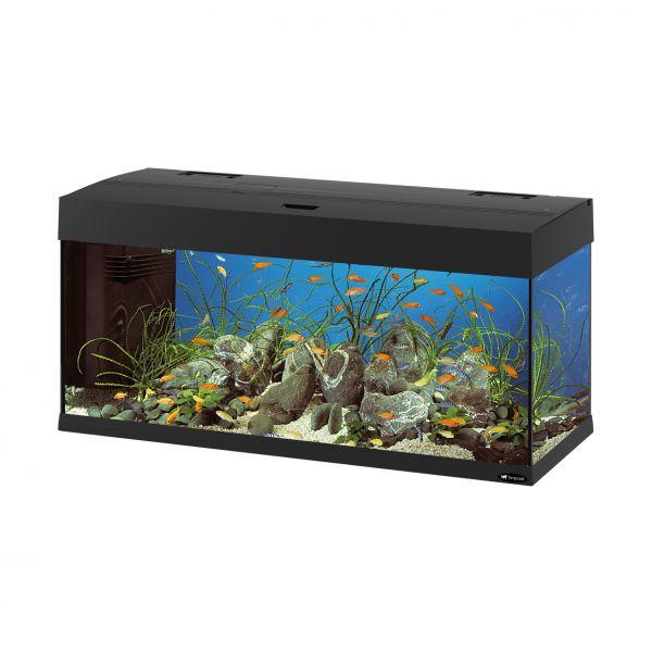 Ferplast aquarium dubai 100 zwart