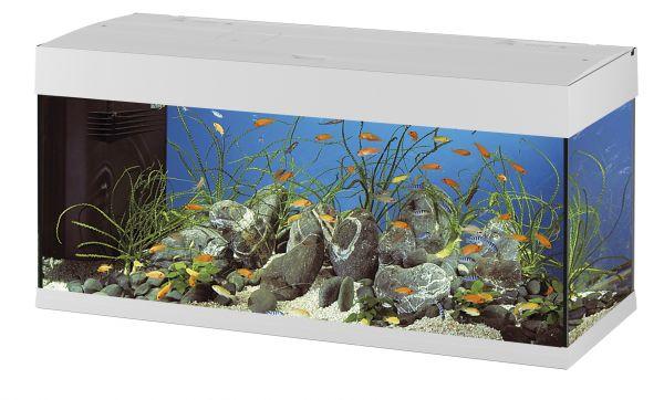Ferplast aquarium dubai 120 wit