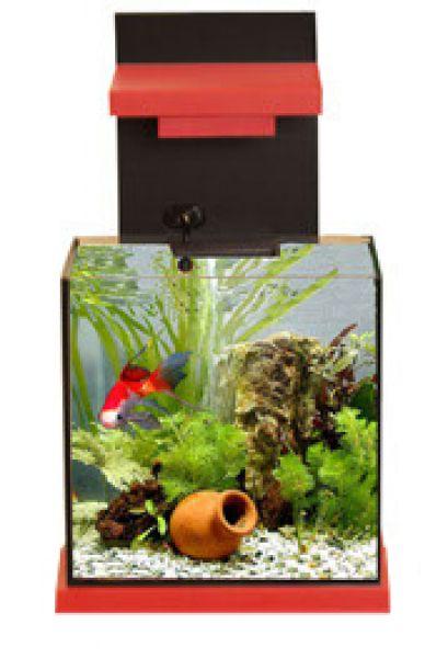 Adm aquacubic aquarium met filter zwart-rood