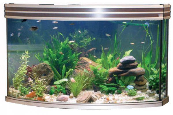 Adm aquarium horizon aluminium-elm