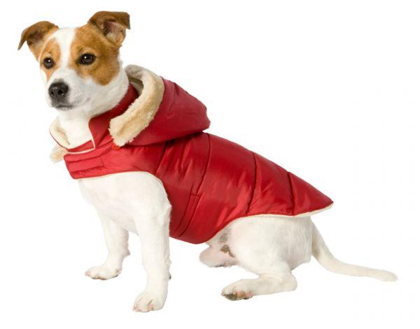 Hondenjas met capuchon rood 25cm Adori